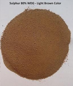 sulphur-80-wdg-light-brown